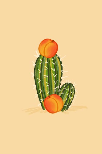 cactus and its oranges poster collective