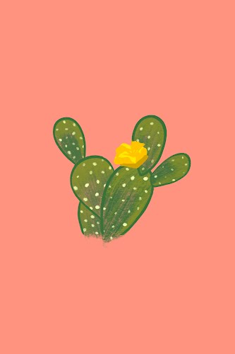 cactus and flower poster collective