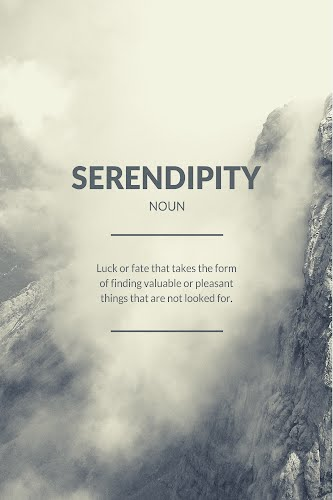 serenpidity word definition poster collective