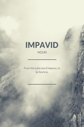 impavid word definition poster collective